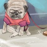 Depressão em cães: saiba como identificar e tratar