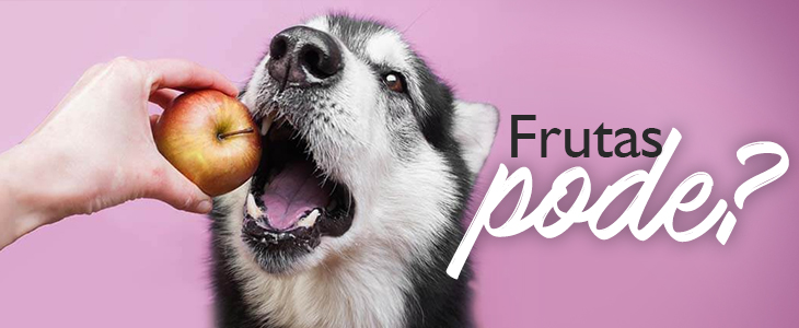 fruta para cachorro